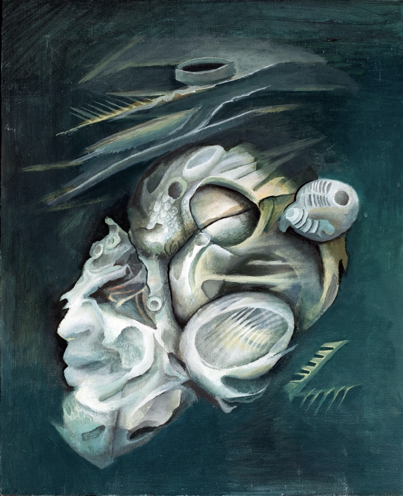 frozen desires <br> oil on canvas  30x40 cm